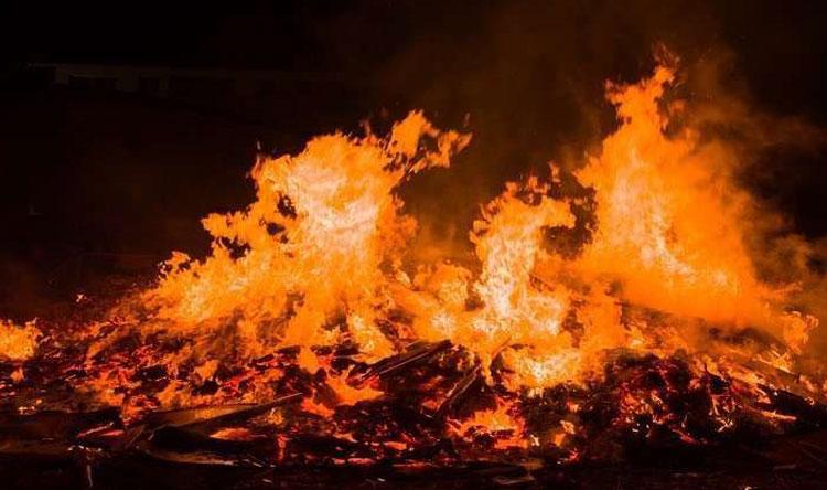 حريق أشجار في النبطية