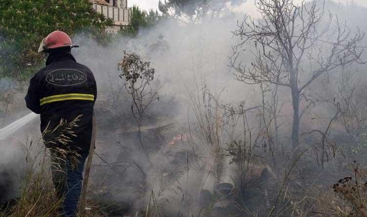بالصور: حريق أعشاب واشجار في عاليه