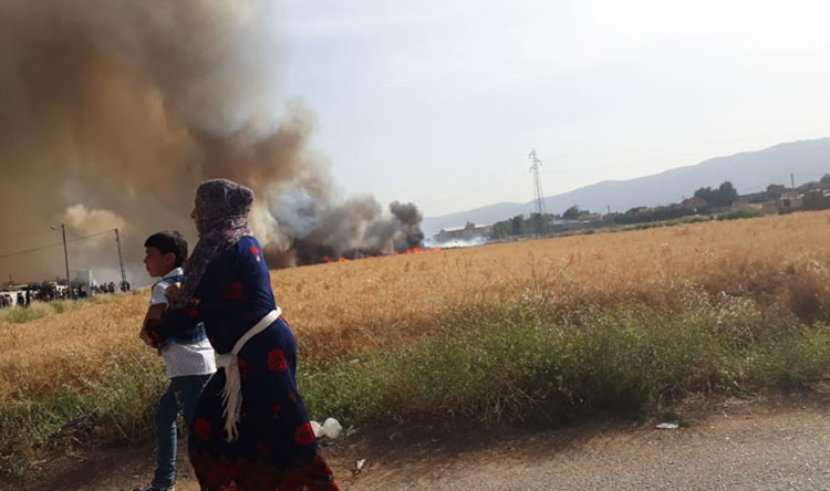 إخماد حريق في برالياس التهم مساحات شاسعة من حقول القمح