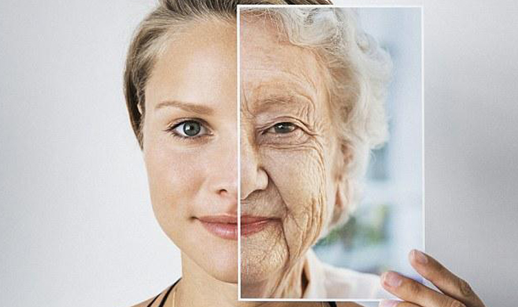 دواء مبتكر يجدد أعضاءك ويطيل عمرك لـ150 عامًا