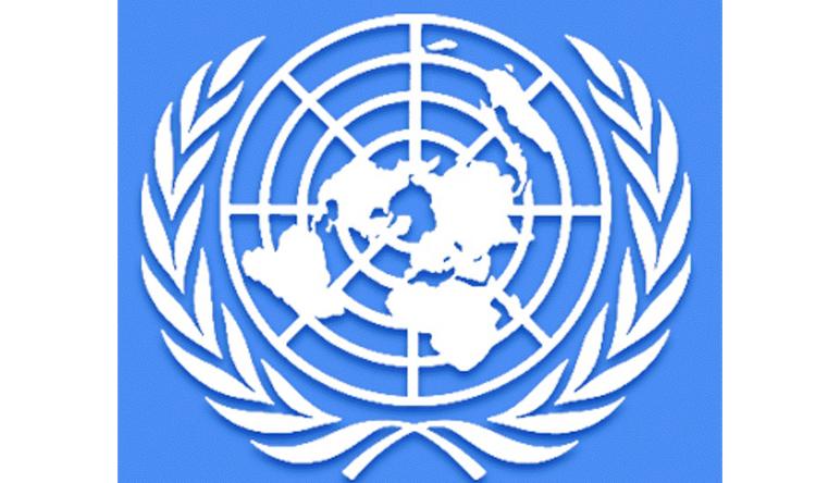 التقرير السنوي للأمم المتحدة عن التقدم في تنفيذ الإطار الاستراتيجي للبنان