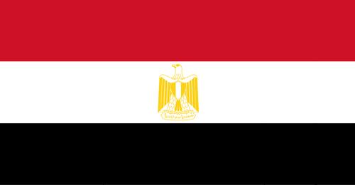 الرئاسة المصرية: لا صحة للطروحات حول توطين الفلسطينيين في سيناء