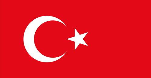مقتل طفل وإصابة 15 شخصاً بإنفجار في جنوب شرق تركيا