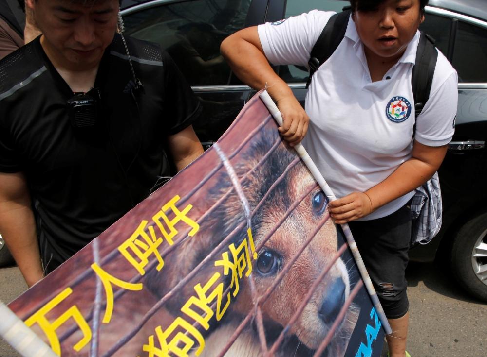 بالصور- مدافعون عن حقوق الحيوان: لوقف مهرجان صيني لأكل لحوم الكلاب