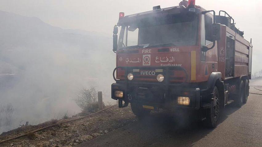 بالصور: حريق أشجار في احد احراج طورزيا