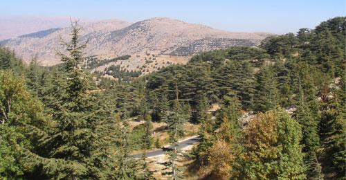 وقائع دموية تلوح في الأفق اللبناني