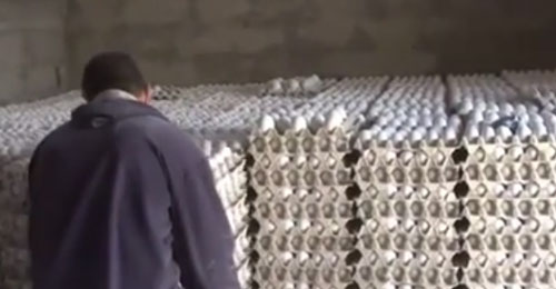 بالفيديو: بيض غير مطابق مهرب من سوريا أو عبر الأراضي السورية