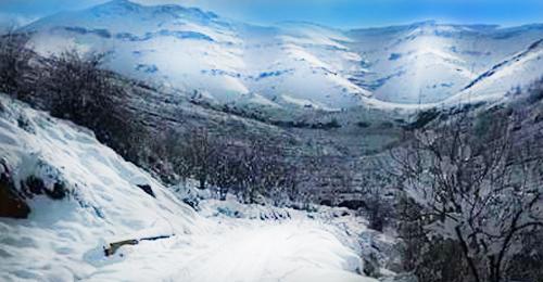العاصفة تتجدد الأحد والثلوج تلامس الـ600 متر