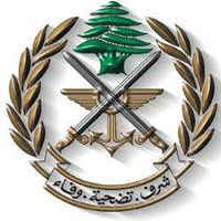 الجيش: توقيف 12 سوريا يتجولون بطريقة غير شرعية
