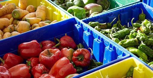 هل سينخفض إنتاج المواد الغذائية في العالم؟!