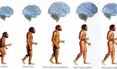 كيف مدّن البشر أنفسهم؟