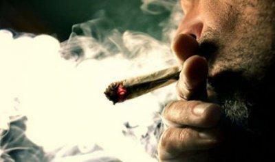 توقيف شابين لبنانيين وفتاة ينشطون في تجارة وترويج المخدرات في جبيل