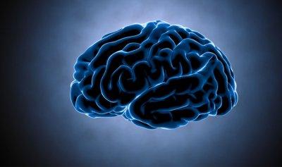 أطعمة تؤدي الى اضطرابات في الدماغ