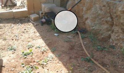 بالصورة: مواطن قضى بطلق ناري من بندقيته عن طريق الخطأ في جرجوع