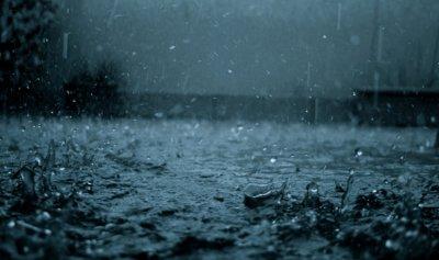 ضباب وأمطار وانخفاض بدرجات الحرارة  في الأيام المقبلة