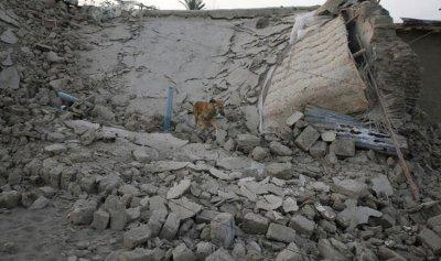 زلزال بقوة 5.4 يضرب جنوب غرب إيران