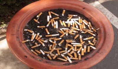 """""""أعقاب السجائر"""" جعلت منه مليونيراً"""