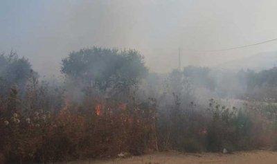 حريق في زغرتا