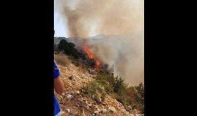 حريق في جربتا البترونية