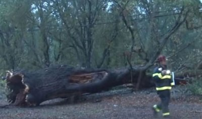 بالفيديو ـ عاصفة تقتلع أعمدة كهرباء في أميركا