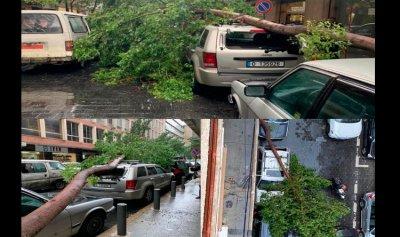 بالصورة: سقوط شجرة كبيرة على السيارات في الحمرا