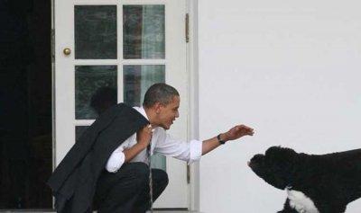 """أوباما ينعى كلبه: """"خسرت أسرتنا رفيقاً مخلصاً"""""""