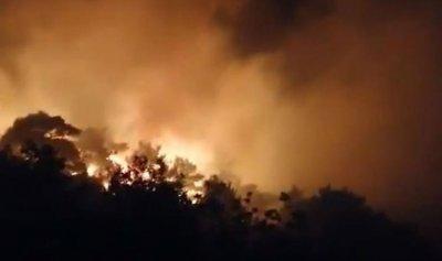 بالفيديو ـ أكروم تحترق والأهالي يستغيثون