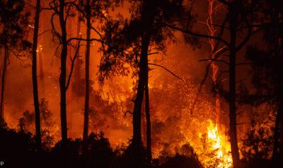 الحرائق تشتعل بتركيا واليونان وإيطاليا