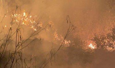 اخماد حريق أعشاب في عمشيت