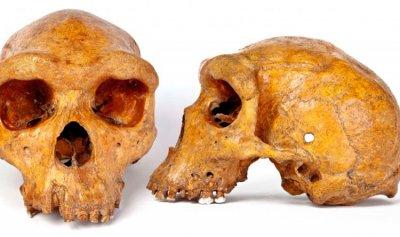 جمجمة عمرها 32 ألف عام في الصين