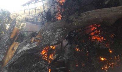 بالصور: استمرار عملية إحراق المنازل والسيارات إثر إشكال وادي الجاموس