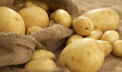 البطاطا أقوى من كريمات التجميل