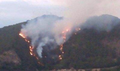 الحرائق تتوسع في دميت وجنبلاط يتفقد المناطق