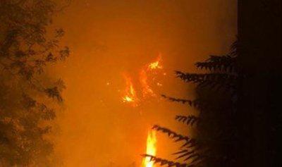 لبنان يحترق وأنتم الجحيم