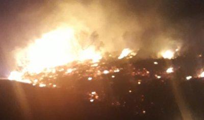 مساع لإخماد حريق في أحراج بينو