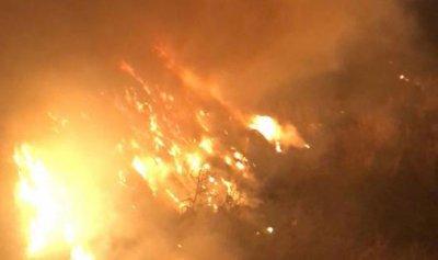 بالصور: حريق في شكا