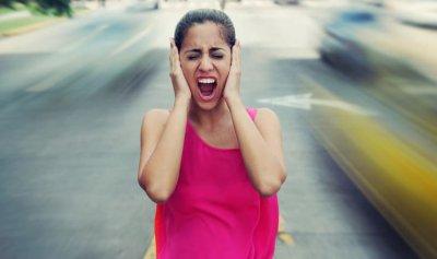 ضوضاء البشر يؤثر على الحيوانات والحشرات