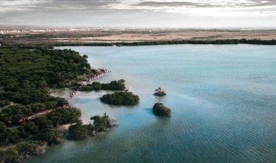 بالفيديو والصور: قافلة من الإبل تسبح في البحر