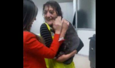 بالفيديو: قطة تؤخر اقلاع طائرة الميدل ايست 50 دقيقة