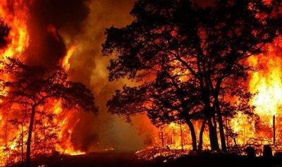 فرق الإطفاء تسابق الحرائق في أستراليا