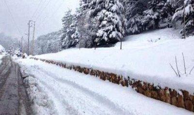 طريق عيناتا الأرز مقطوعة بالثلوج