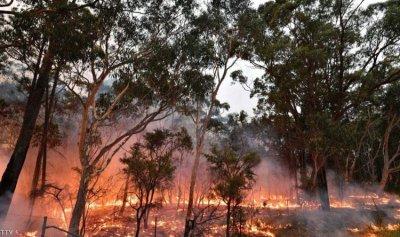فرق الإطفاء الأسترالية تسابق الزمن للسيطرة على الحرائق