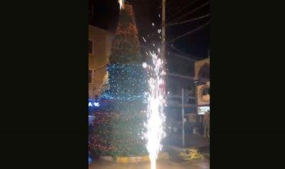 بالفيديو: عروس الثورة تضيء شجرة الميلاد