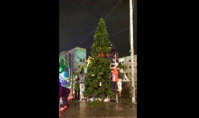 بالصورة: الثوار يرفعون شجرة الميلاد في صيدا