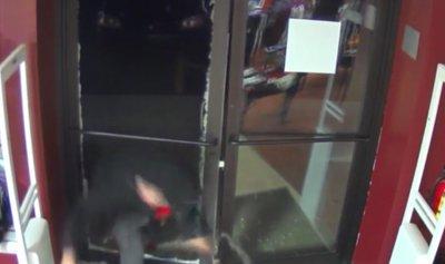 بالفيديو: اقتحم المتجر لسرقة ألعاب جنسية