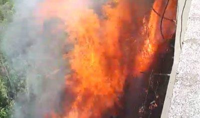 حريق في وادي حلبا