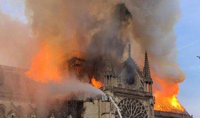 """""""بطل غير آدمي"""" أنقذ كاتدرائية نوتردام من الدمار"""