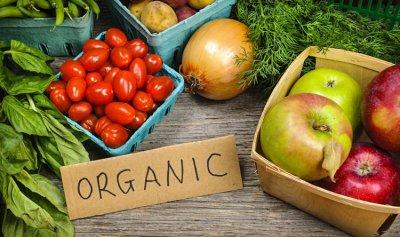 الأغذية العضوية… مفيدة؟