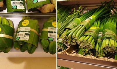 بالفيديو: أوراق الموز عوضاً عن البلاستيك