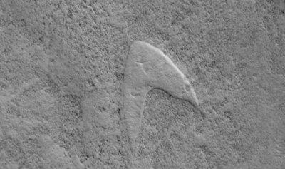 """العثور على شعار """"ستار تريك"""" على المريخ"""